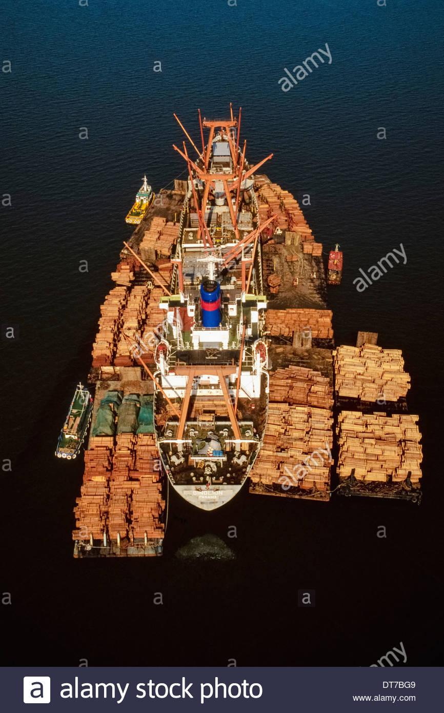 Rainforest lumber loaded on freighter (aerial) Sandakan Borneo Sandakan Borneo - Stock Image