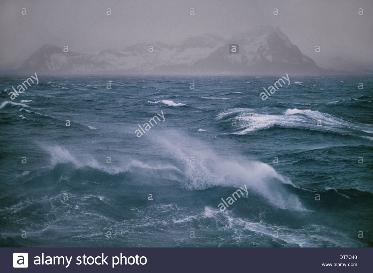 Stormy seas off the northern tip of South Georgia Island in the Falkland Islands South Georgia Island Falkland Islands - Stock Image