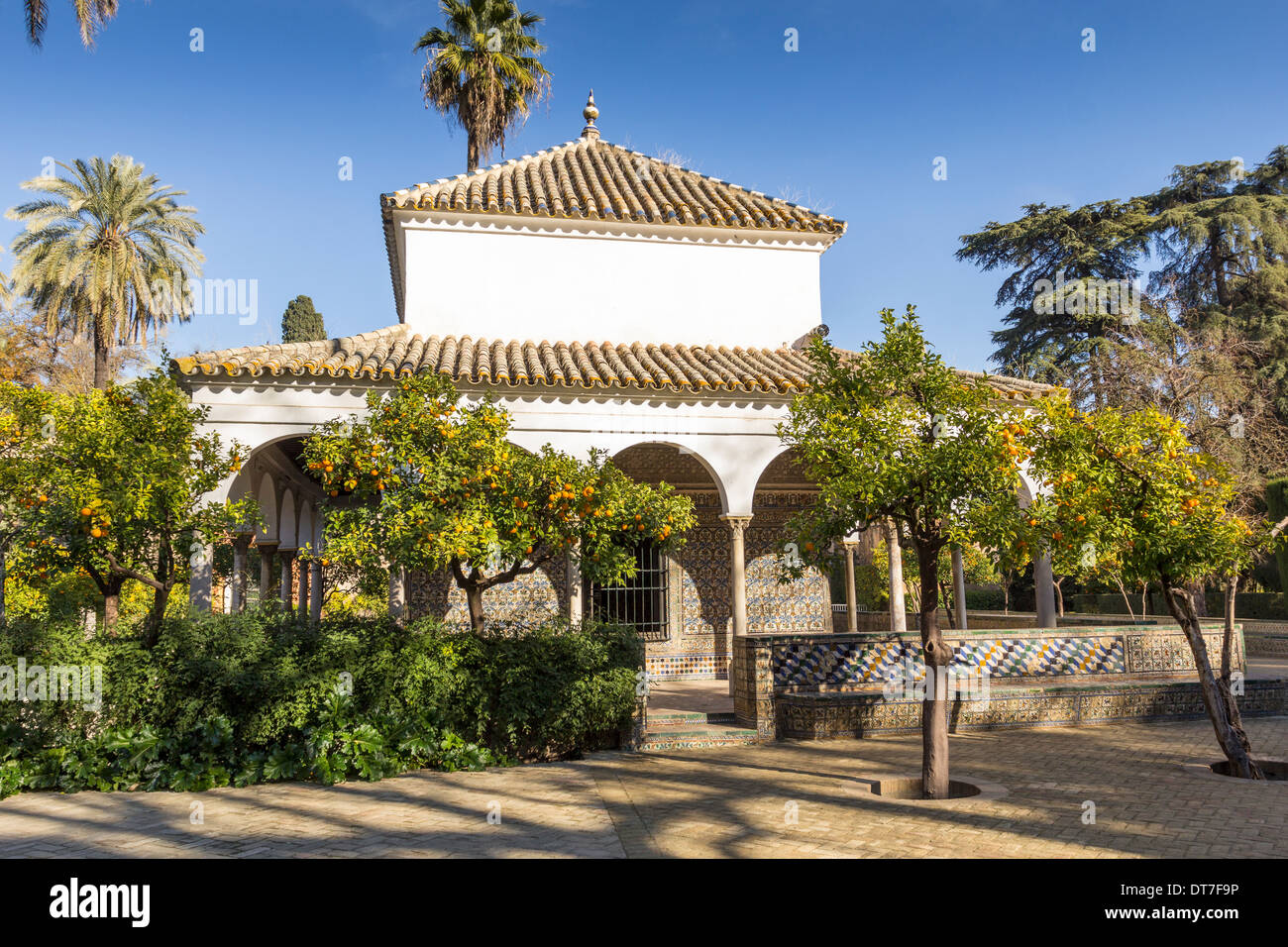 ALCAZAR OF SEVILLE SPAIN GARDENS AND THE PAVILION OF CARLOS V SURROUNDED BY ORANGE TREES FULL OF FRUIT IN DECEMBER - Stock Image