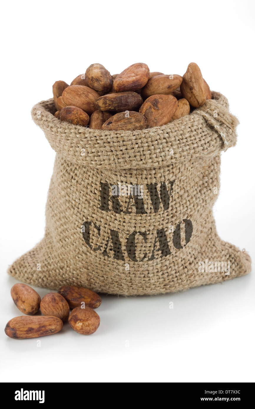 Cacao beans in burlap bag - Stock Image