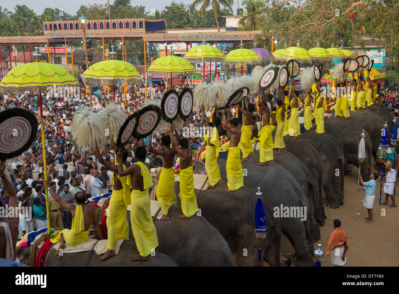 Line of elephants being ridden by priests holding Muthukuda parasols and Venchamaram whisks at the  Goureeswara Temple Festival, Cherai, near Kochi (Cochin), Kerala, India - Stock Image