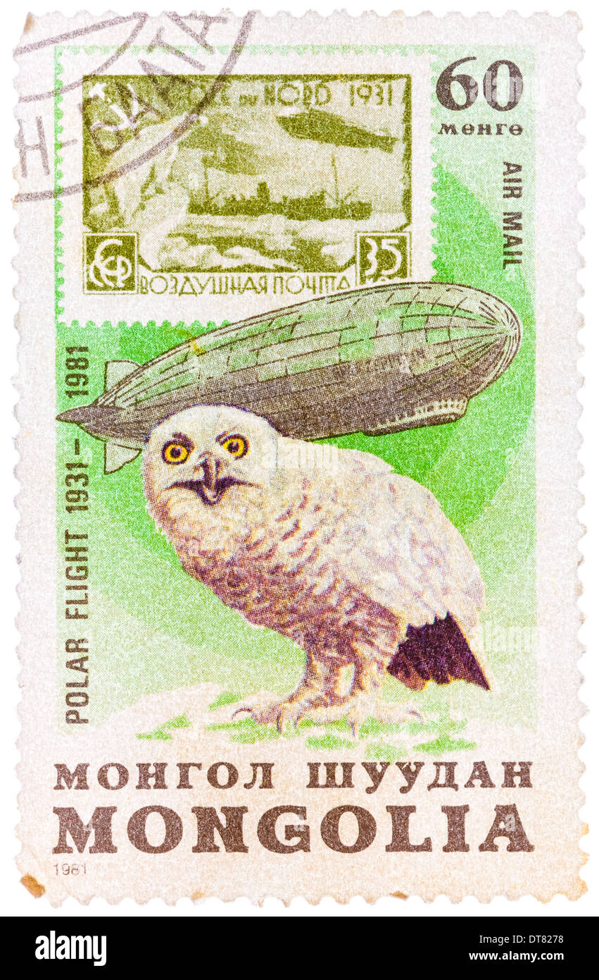 """Stamp printed in MONGOLIA shows image of a snowy owl, from the series """"Polar flight 1931-1981 Stock Photo"""