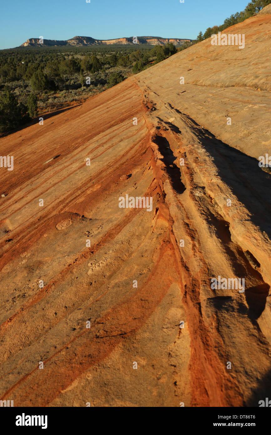 stripes eroding sandstone Slickrock Utah - Stock Image