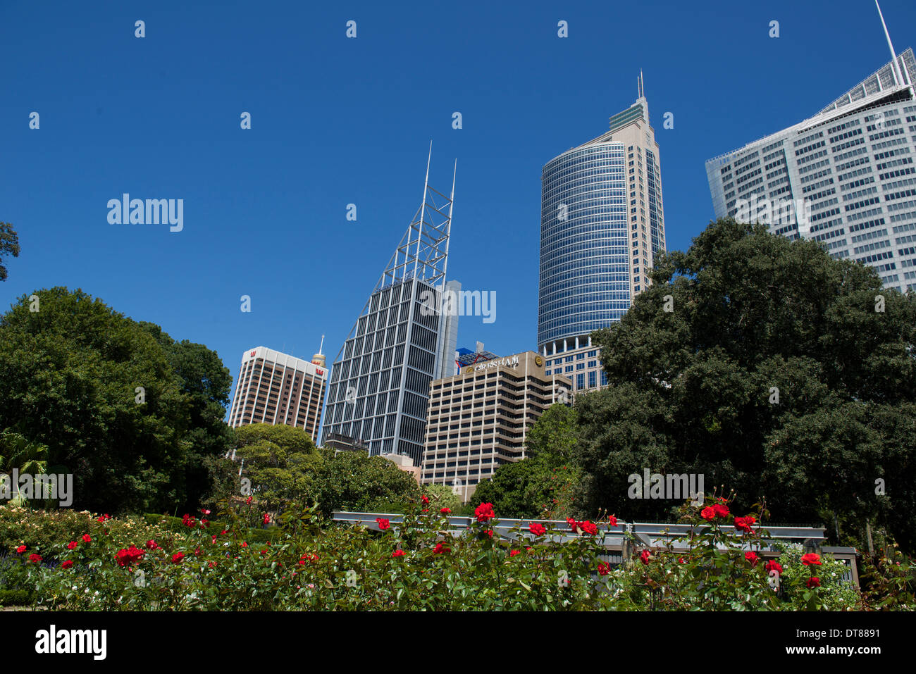 Sydney cbd stock photos sydney cbd stock images alamy - Apple store victoria gardens appointment ...