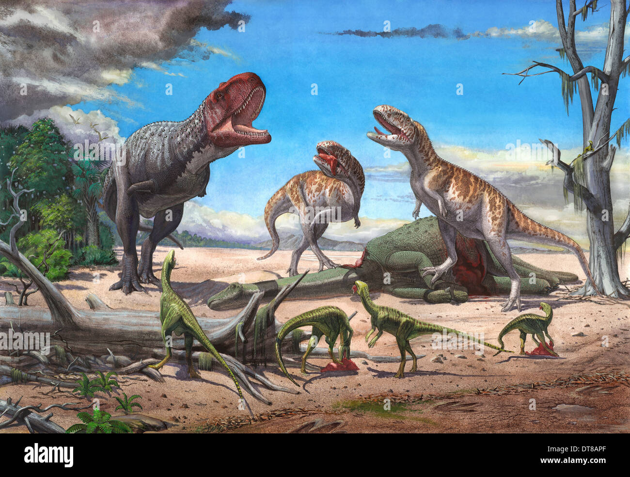 A large Rajasaurus roars in an attempt to scare two Indosuchus away from their kill. - Stock Image