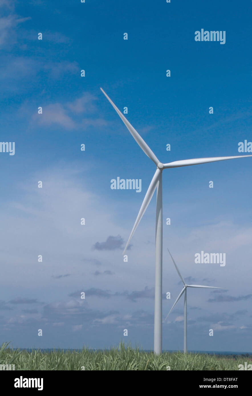 Wind turbines in the field to generating electricity, the alternative power - Stock Image