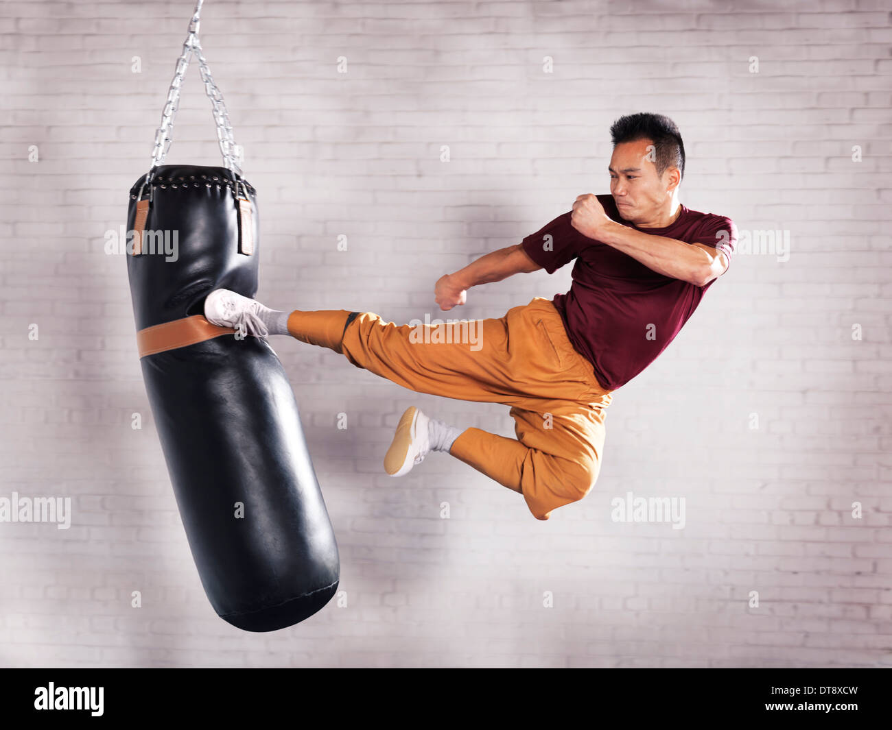 Martial artist, Shaolin Kung Fu instructor Shi Chang Dao practicing flying kick on a punching bag - Stock Image