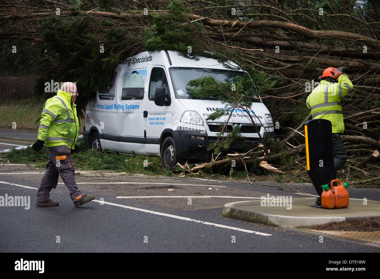 Aberystwyth, Wales, UK. 12th February 2014. Winds gusting up to 107mph are battering the west wales coast at Aberystwyth. A fifty foot Leylandii tree toppled in the winds and crushed a white minibus on the main road into Aberystwyth this afternoon. There are no reports of casualties, The road is closed while workmen chainsaw the tree and remove the debris photo Credit:  keith morris/Alamy Live News - Stock Image