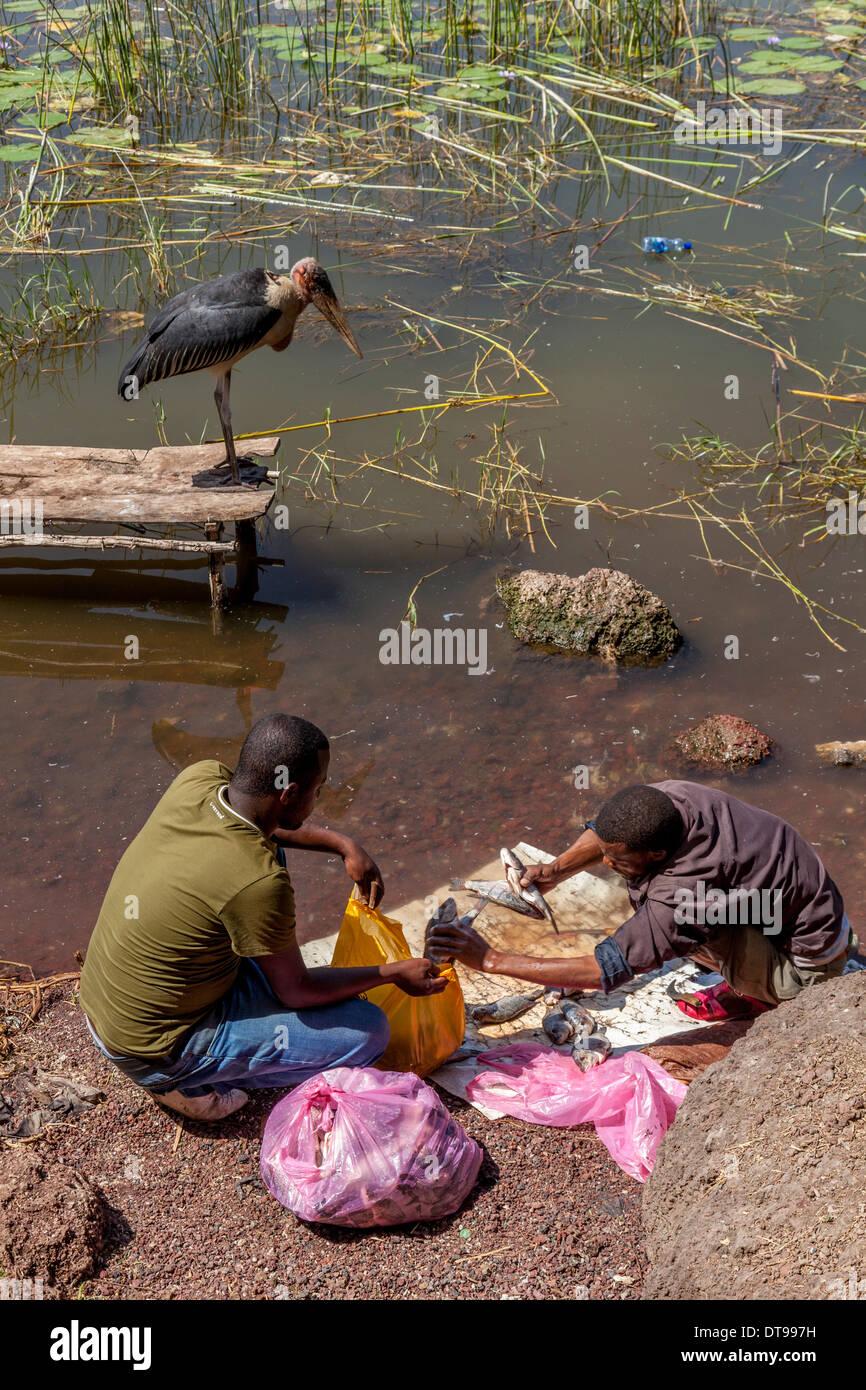 A Man Sells Fish On The Lakeshore, Lake Hawassa, Hawassa, Ethiopia - Stock Image