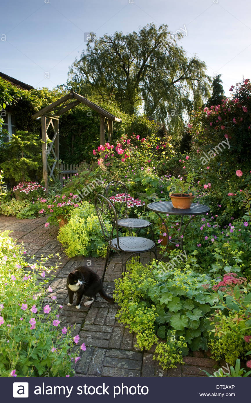 country cottage garden patio terrace with cat table and chairs flowers at Wickets Saffron Walden Essex England summer - Stock Image