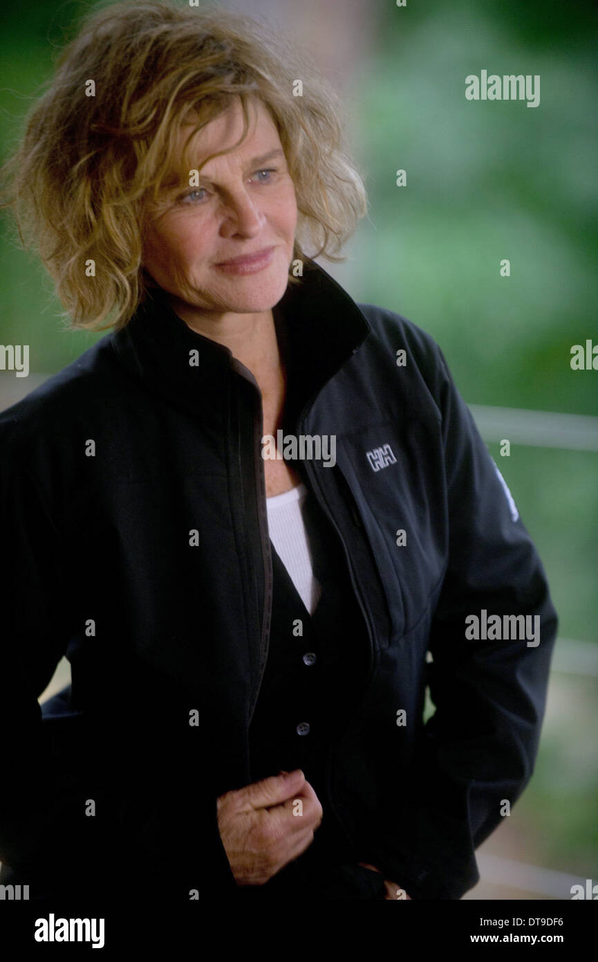 JULIE CHRISTIE THE COMPANY YOU KEEP (2012) - Stock Image