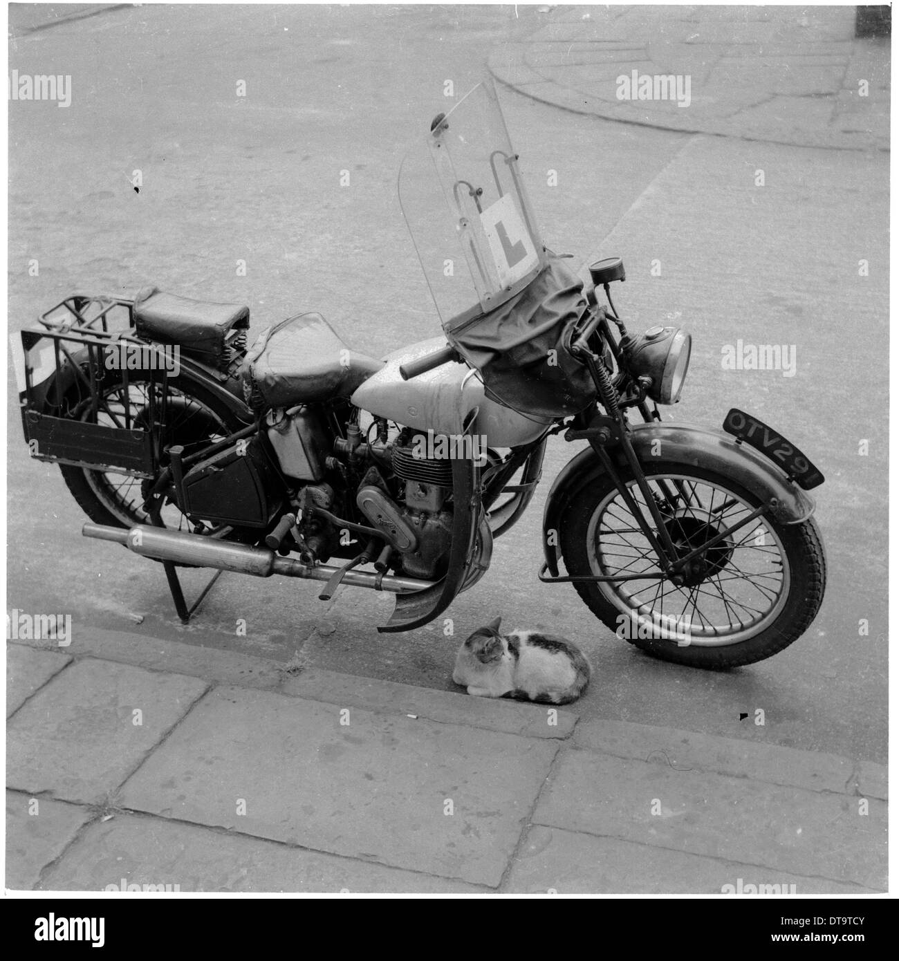 Historical picture from 1950s showing a motor bike parked by a pavement with a small cat underneath it. - Stock Image