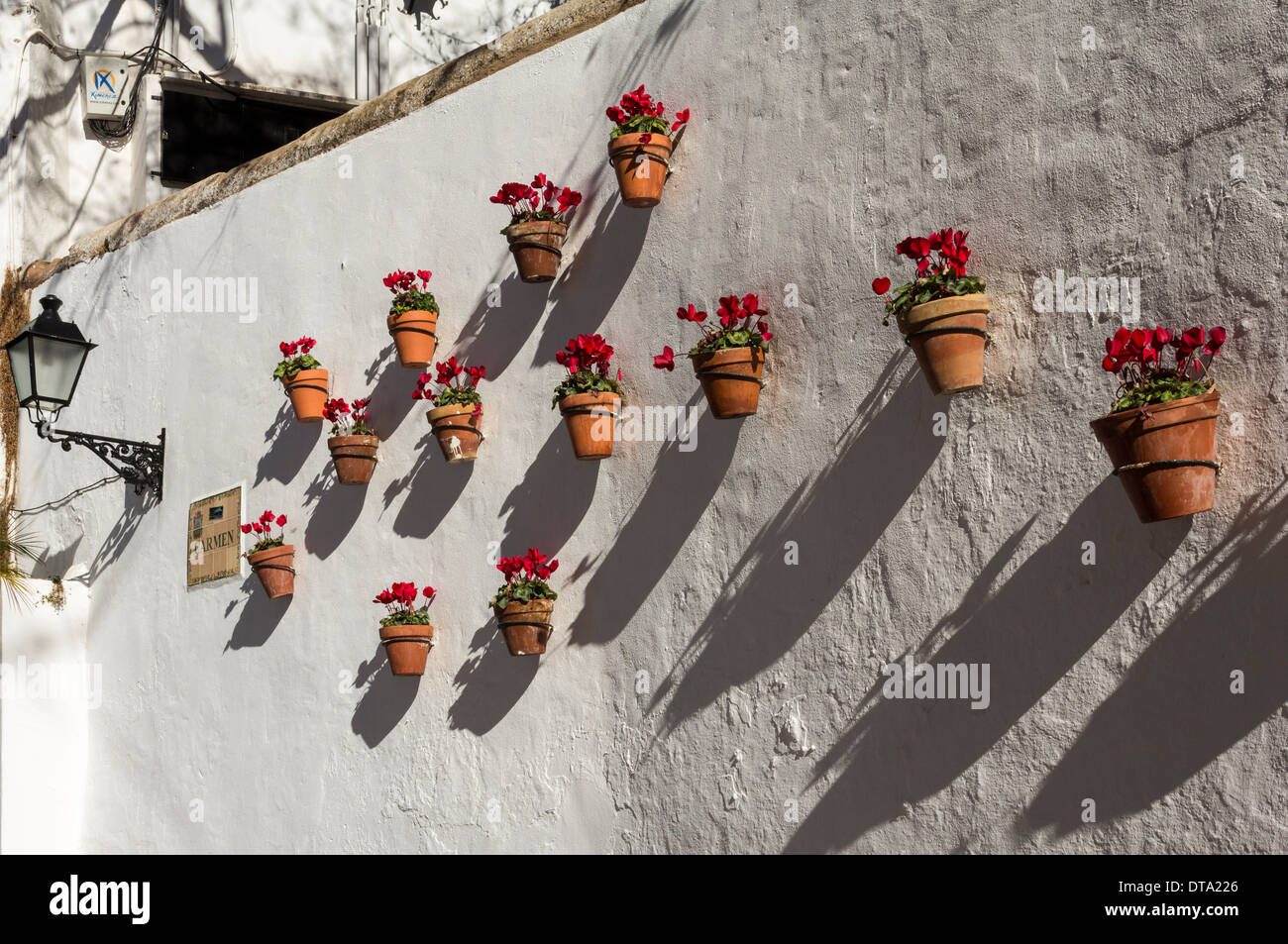 MARBELLA SPAIN THE OLD TOWN AND FLOWER POTS ON A WALL WITH CYCLAMEN FLOWERS AT CHRISTMAS TIME - Stock Image