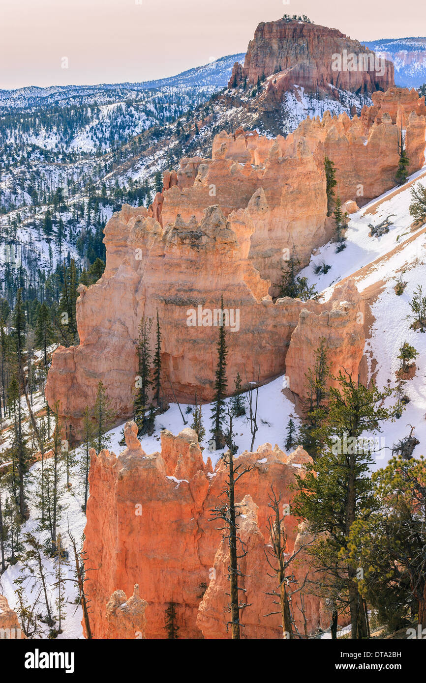 Winter in Bryce Canyon National Park, Utah - USA - Stock Image