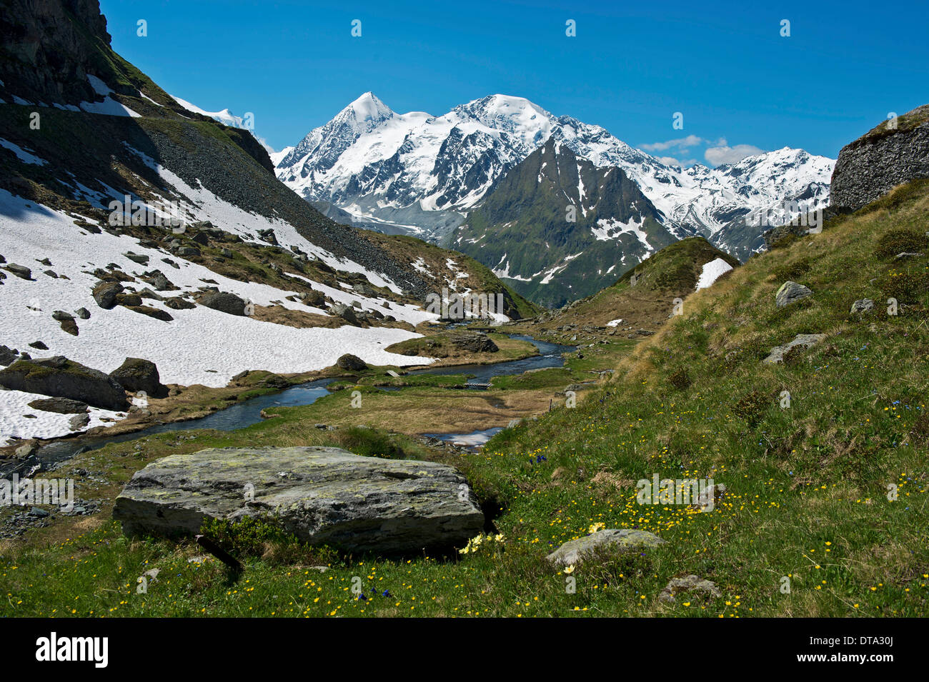 Valley with the Louvie stream in an alpine landscape with the peaks of Combin de Corbassière Mountain, left - Stock Image