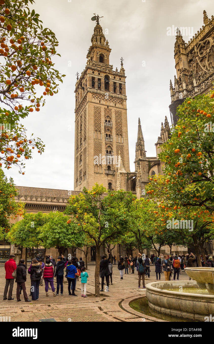 SEVILLE SPAIN CATHEDRAL TOURISTS LISTENING TO THE BELLS RINGING IN THE GIRALDA TOWER AT CHRISTMAS - Stock Image