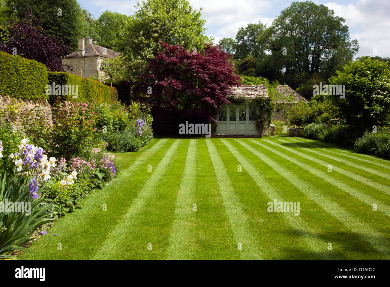 UK gardens. Manicured lawn with mower stripes in a summer garden. - Stock Image