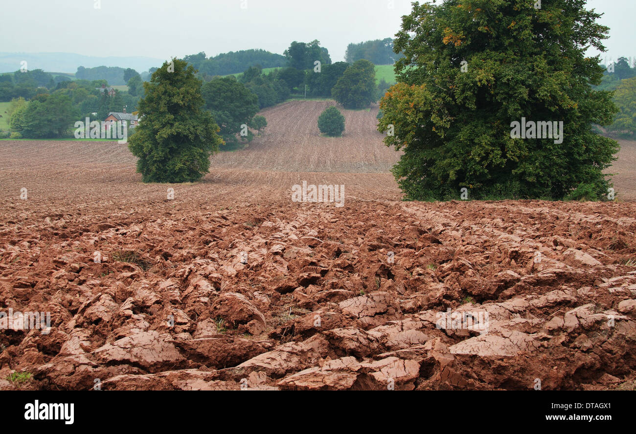 Newly ploughed field in Herefordshire with clods of red earth - Stock Image