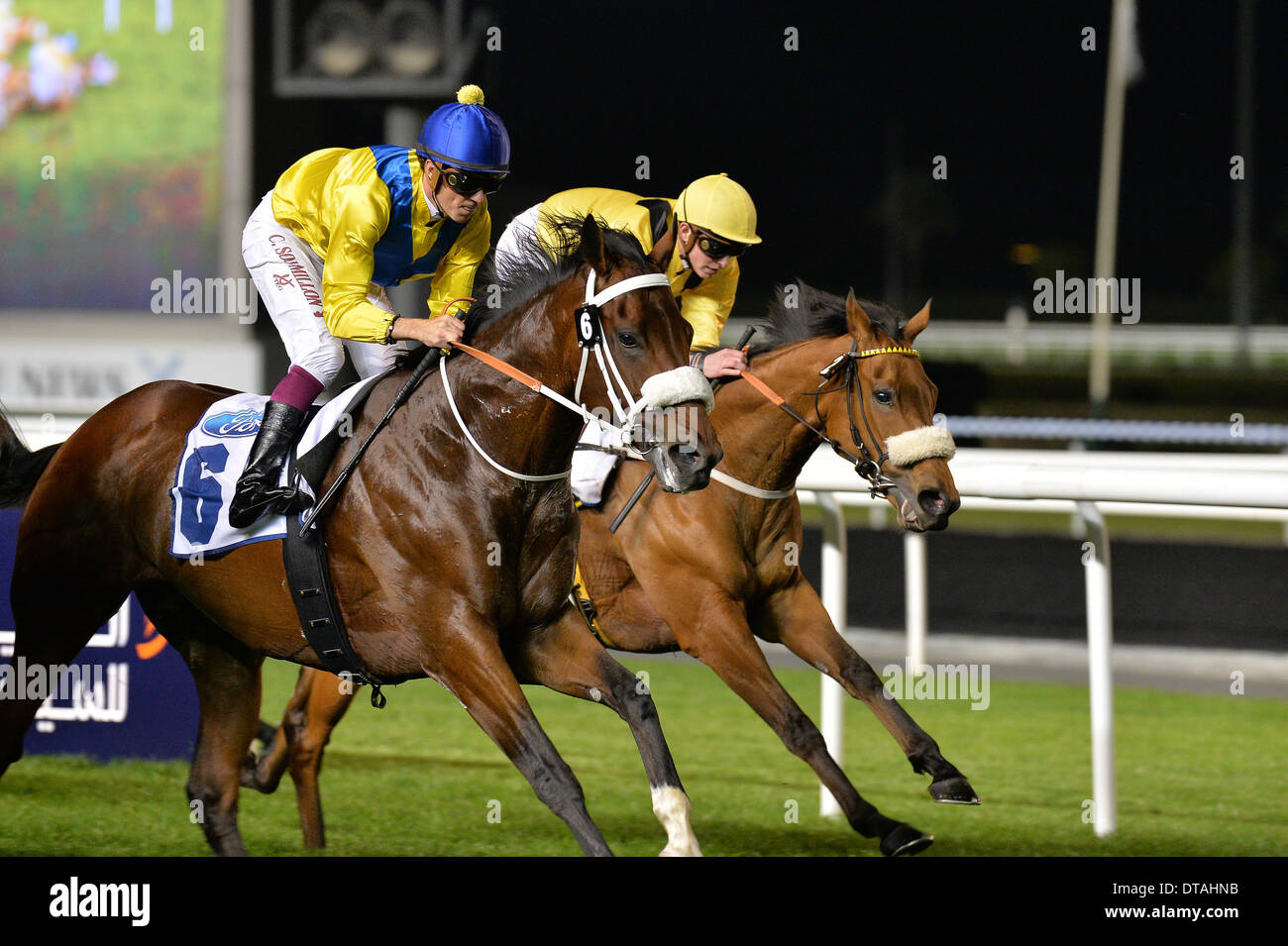 DUBAI, UAE, 13th Feb 2014. Vercingetorix (6) ridden by Christophe Soumillon wins the  Ford Taurus Trophy at the Meydan race track. In second place was CODE OF HONOR ridden by Silvestre de Sousa (not pictured) of Godolphin - Stock Image