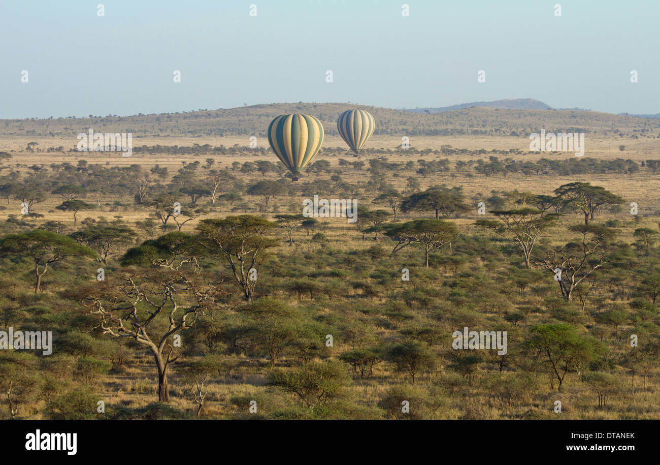 Balloons over the Serengeti National Park, Tanzania, Africa - Stock Image