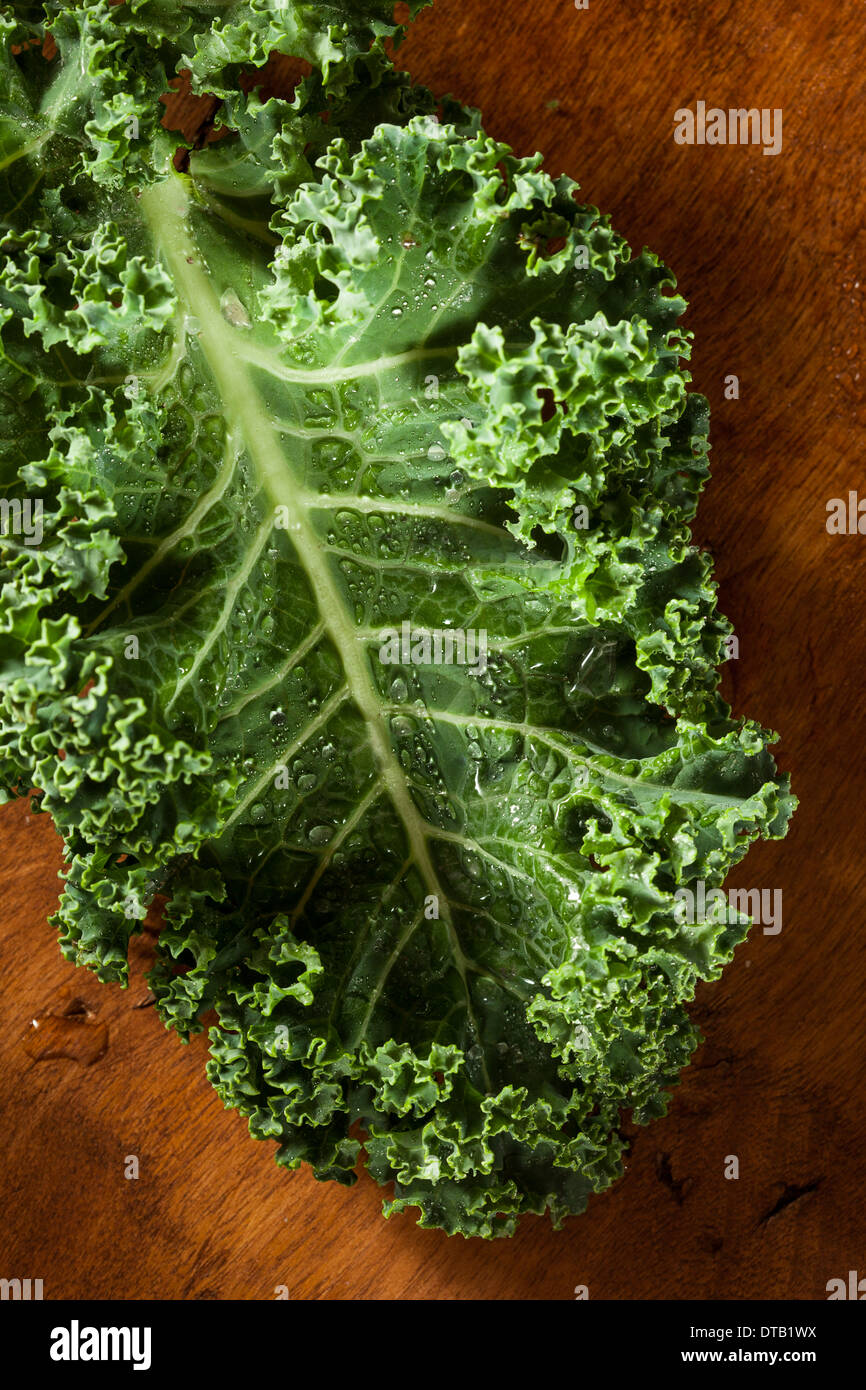 Bunch of Healthy Raw Green Kale Leafy Vegetables - Stock Image
