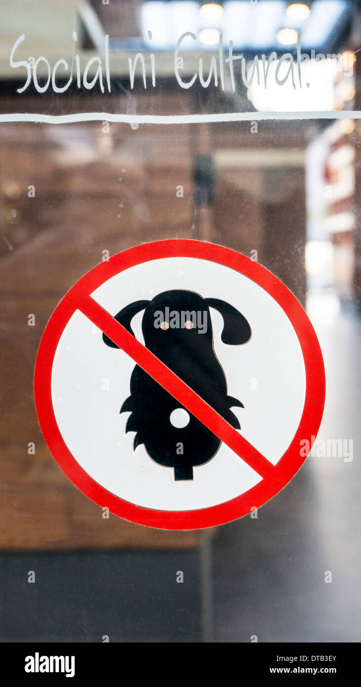 cute frontal version no dogs allowed decal on window of stylish new Starbucks in upscale Plaza del Parque mini mall Oaxaca - Stock Image
