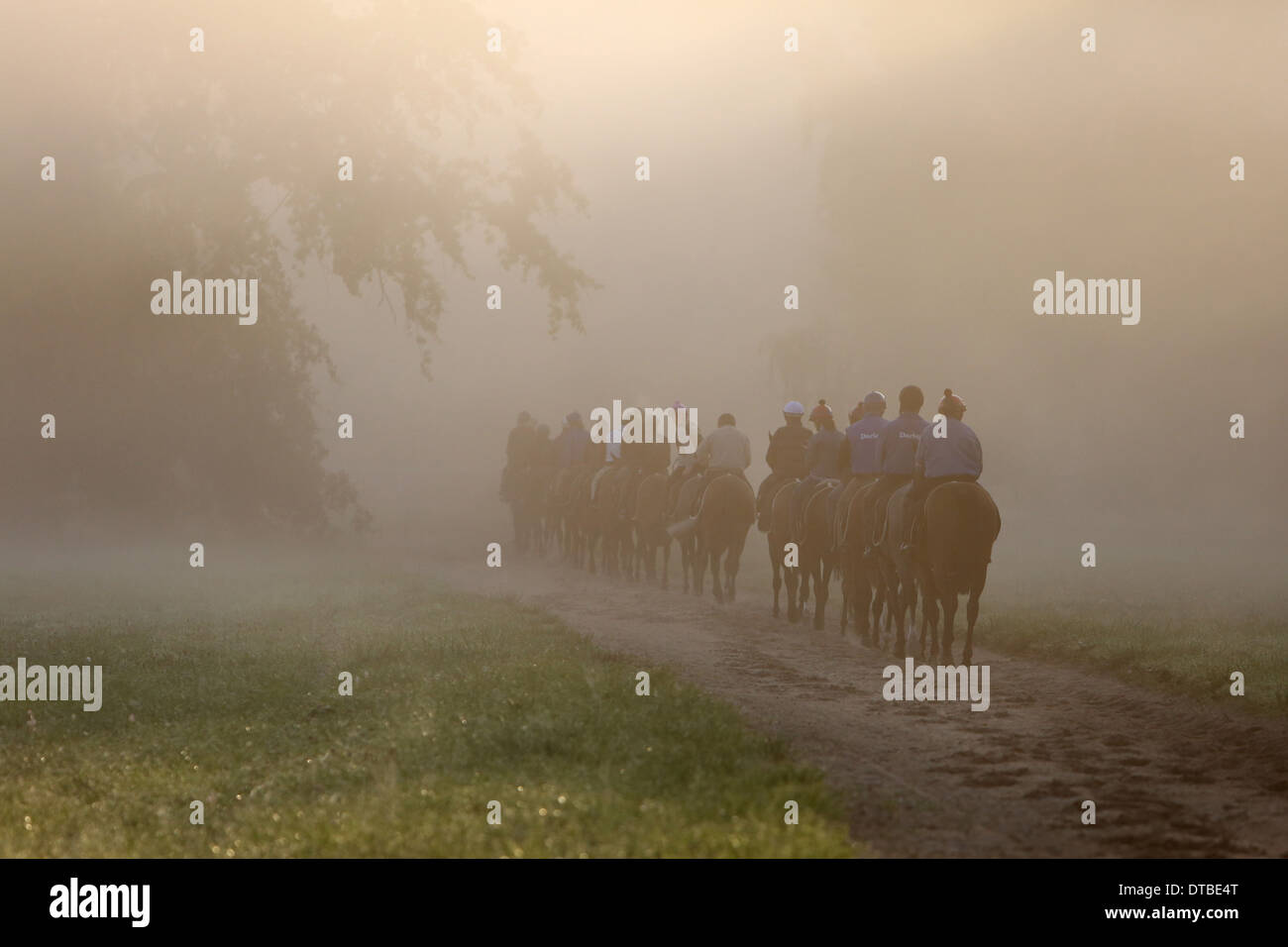 Chantilly , France, riders and horses at the ride in the morning Stock Photo