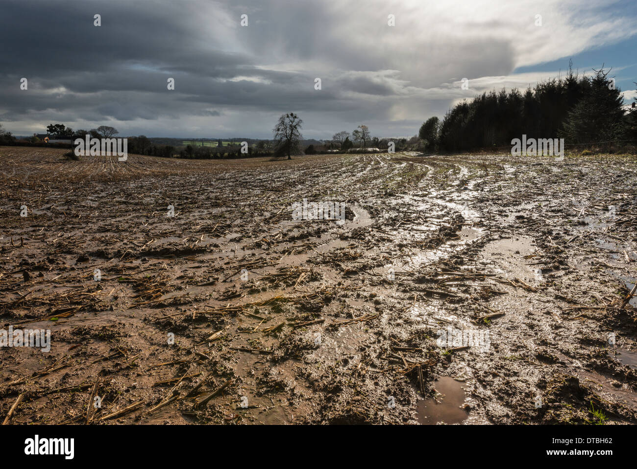 SATURATED FARM LAND AFTER HEAVY RAIN DURING WINTER 2014 GLOUCESTERSHIRE UK WETTEST WINTER ON RECORD - Stock Image