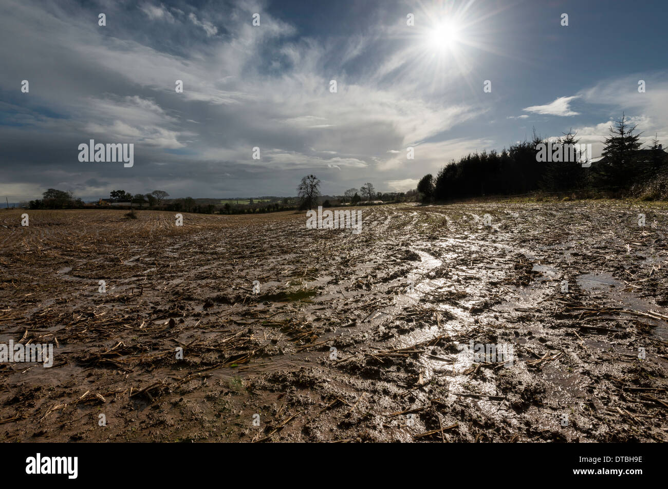 Saturated field in Gloucestershire England February 2014 after wettest winter on record - Stock Image