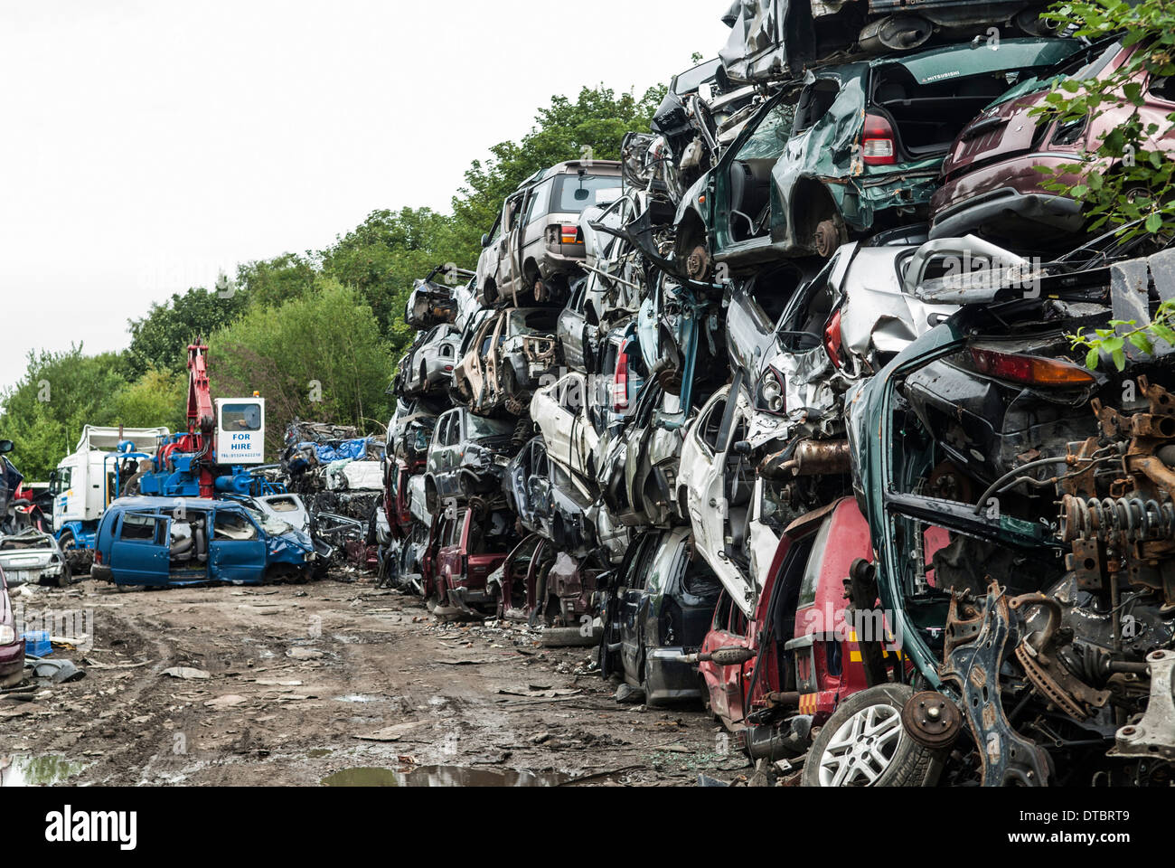 crushed cars in scrap yard uk stock photo 66643033 alamy. Black Bedroom Furniture Sets. Home Design Ideas