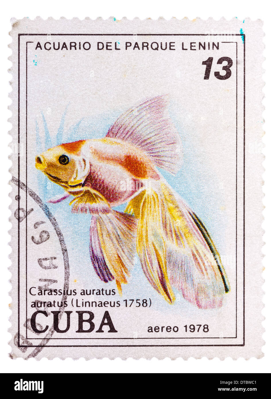 CUBA - CIRCA 1978: A postage stamp printed in the Cuba shows carassius auratus auratus - asian goldfish, circa 1978 Stock Photo