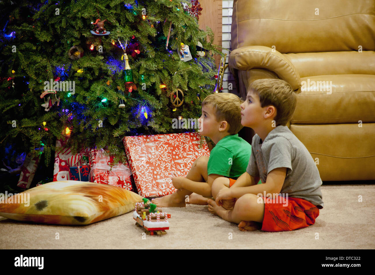 Two engrossed young brothers sitting next to xmas tree - Stock Image