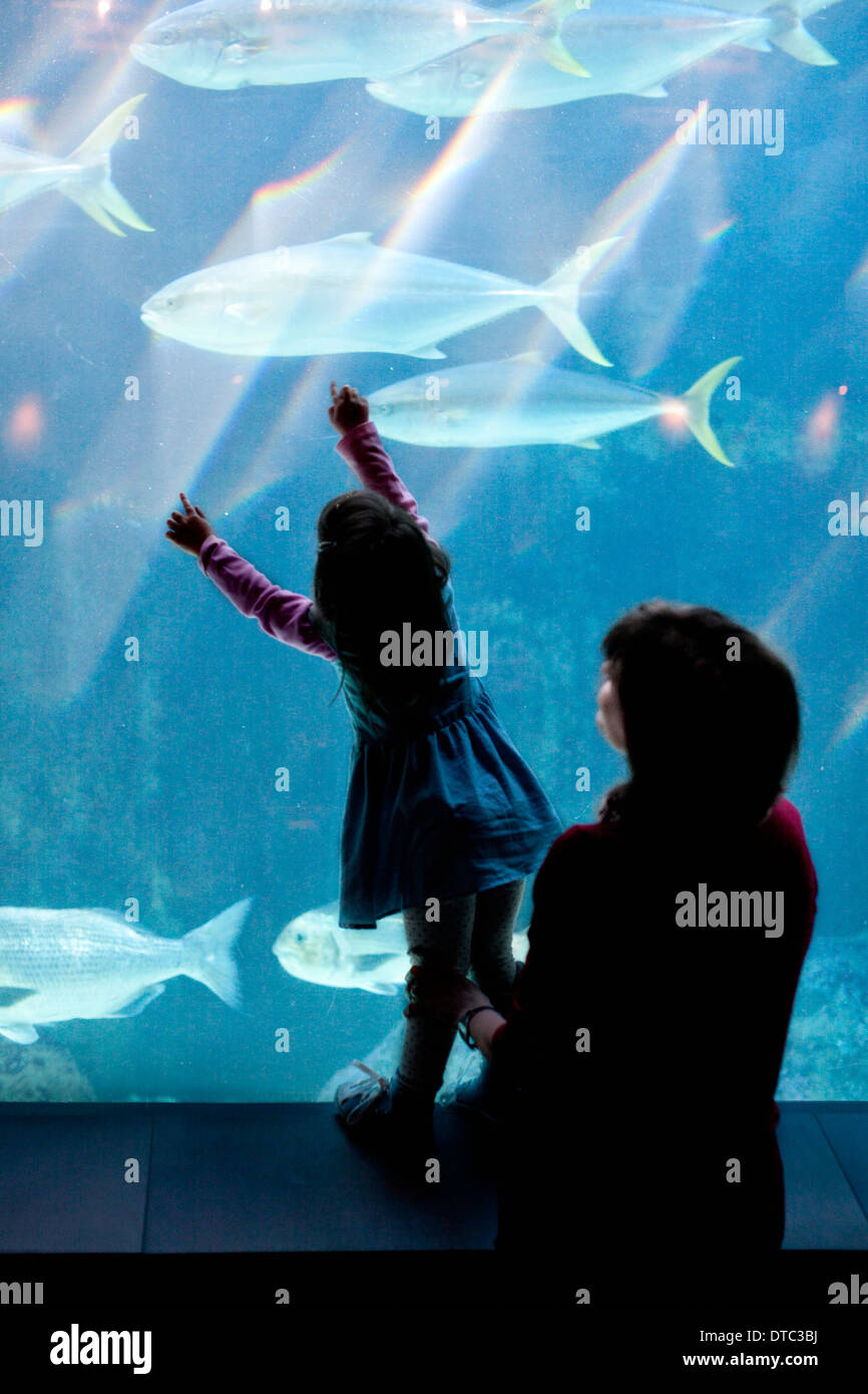 Young girl and grandmother looking at fish in aquarium - Stock Image