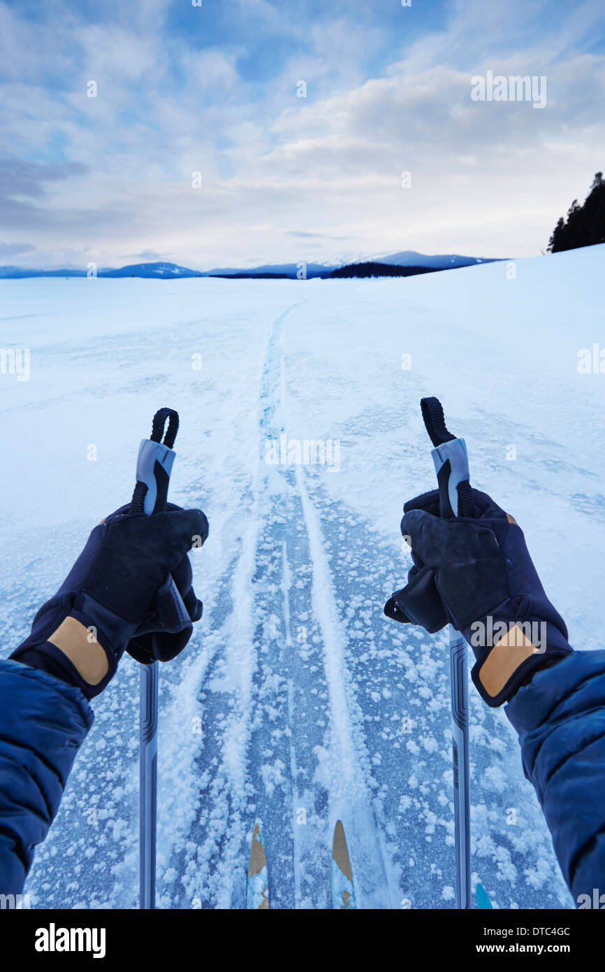 Male arms holding skipoles in vast landscape, Colter Bay, Wyoming, USA Stock Photo