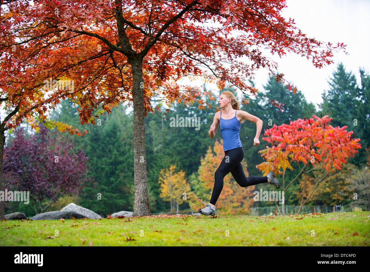 Girl jogging in forest - Stock Image
