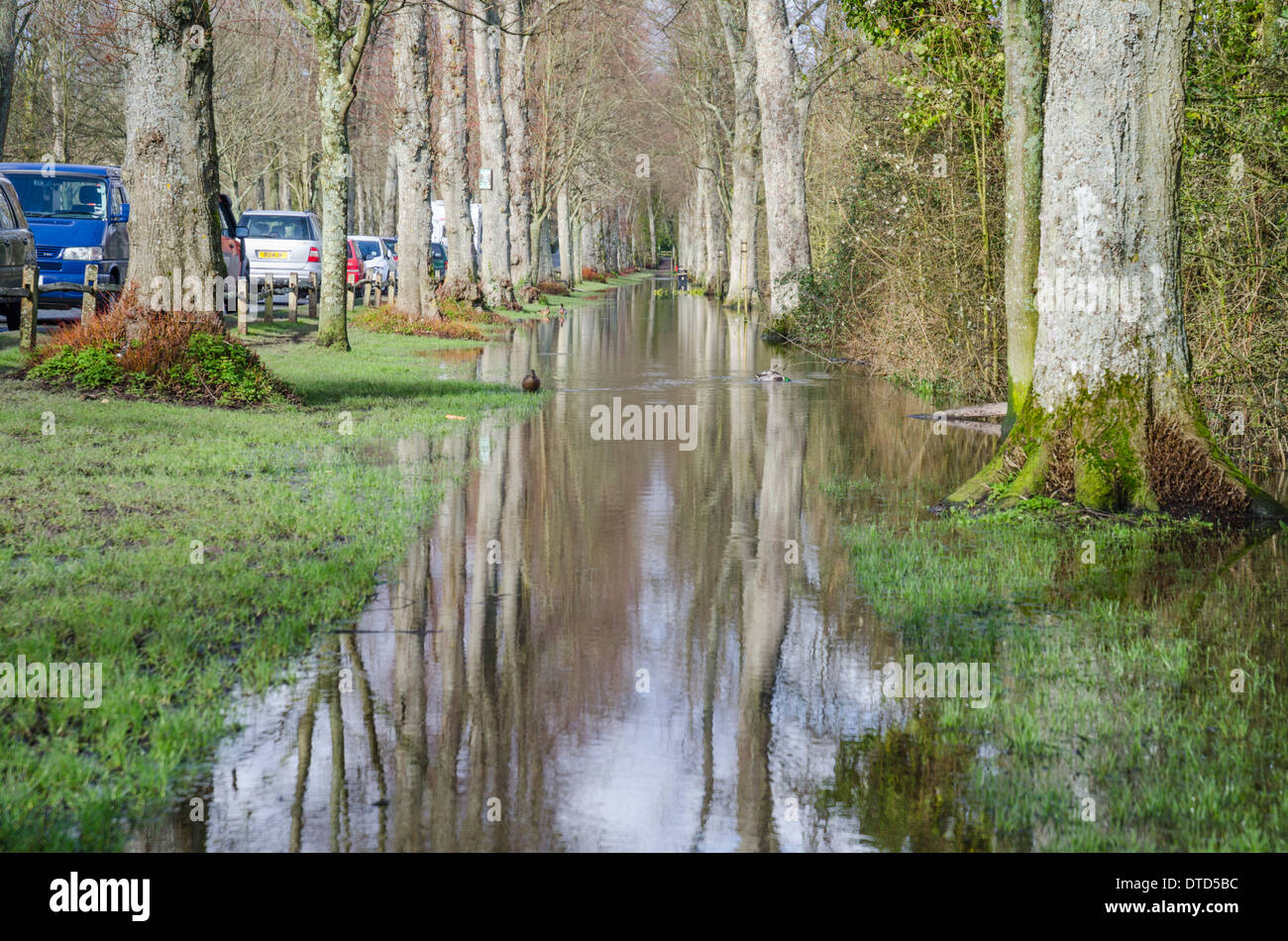 Flooded road and pavement in Arundel, West Sussex, England, UK, after storms and heavy rain in February 2014. - Stock Image