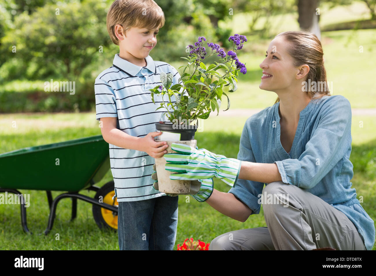 Mother and son gardening - Stock Image