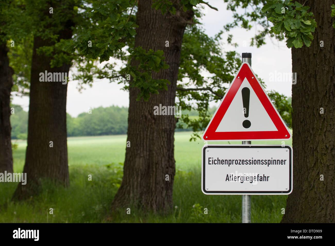Eichen-Prozessionsspinner, Thaumetopoea processionea, oak processionary moth, Warnschild, warning, danger sign - Stock Image