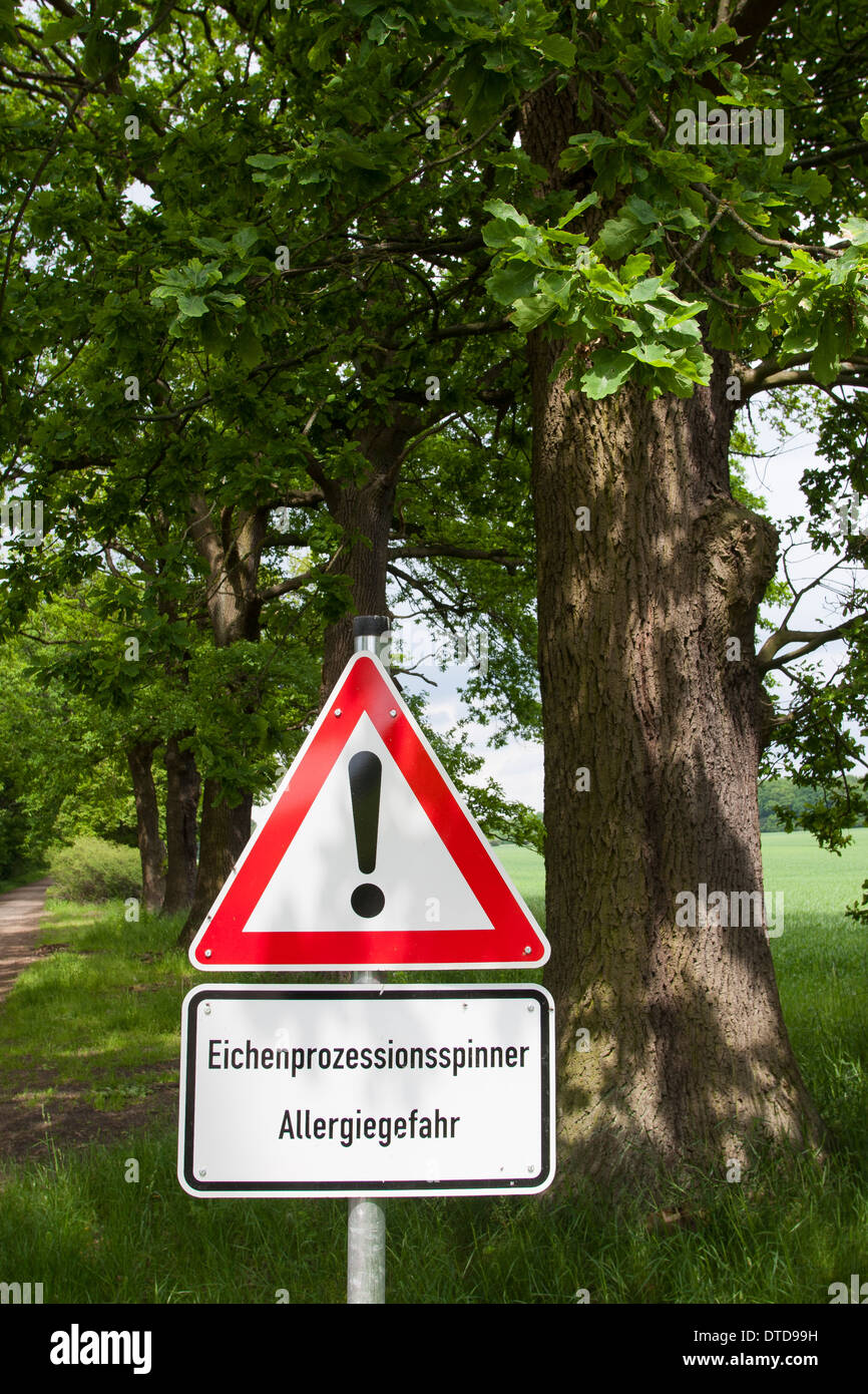 Eichen-Prozessionsspinner, Thaumetopoea processionea, oak processionary moth, Warnschild, warning, danger sign Stock Photo