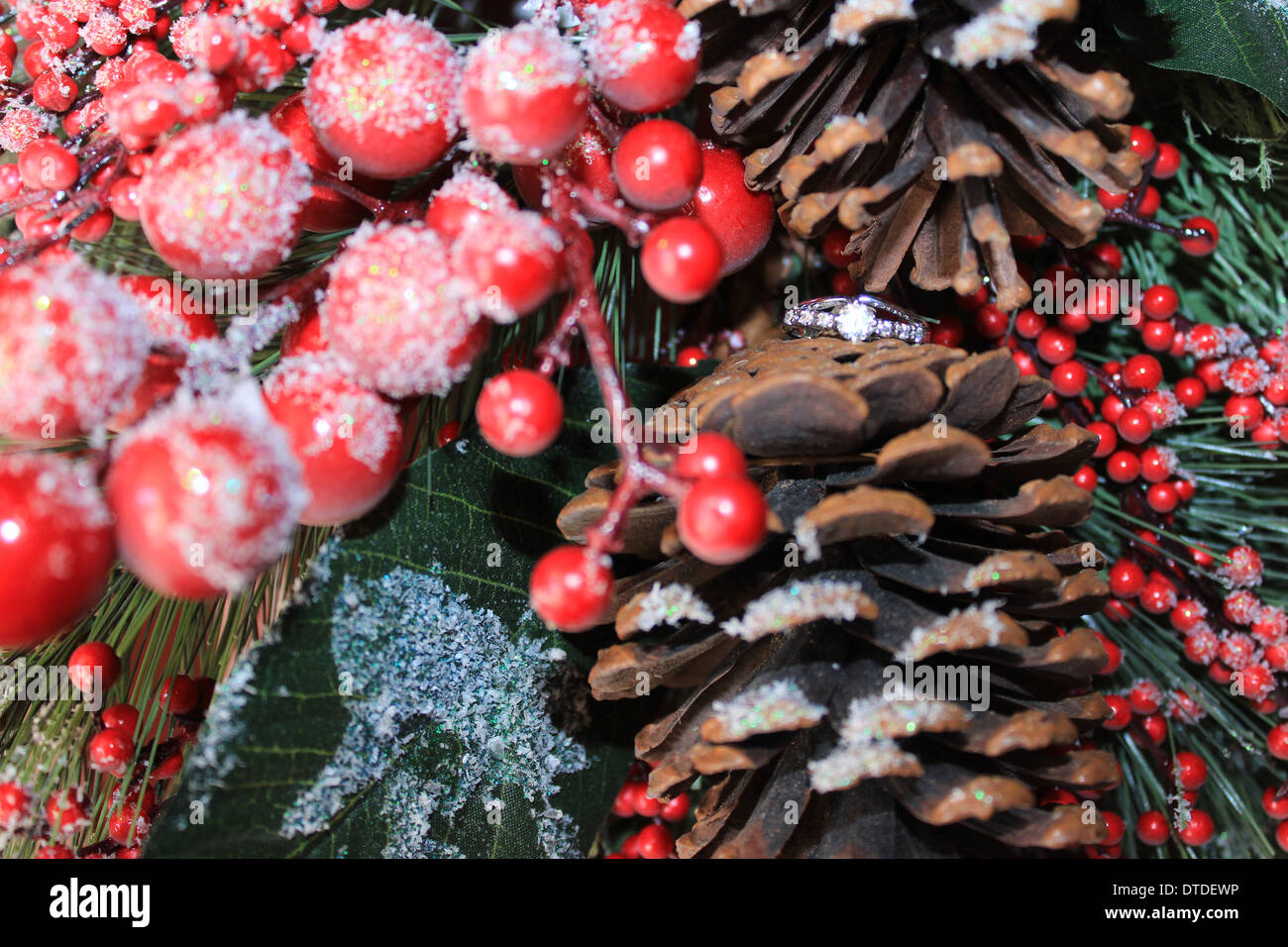 berries pinecones and ring - Stock Image