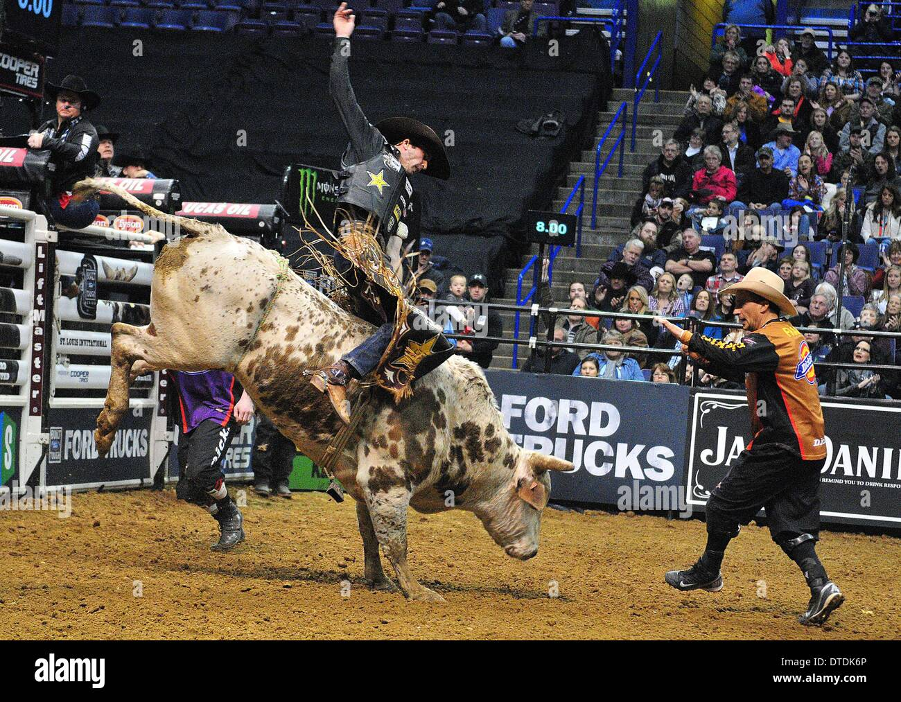 St. Louis, Missouri, USA. 15th Feb, 2014. February 14, 2014: Rider Fabiano Vieira on bull Pistol Pete during the Stock Photo