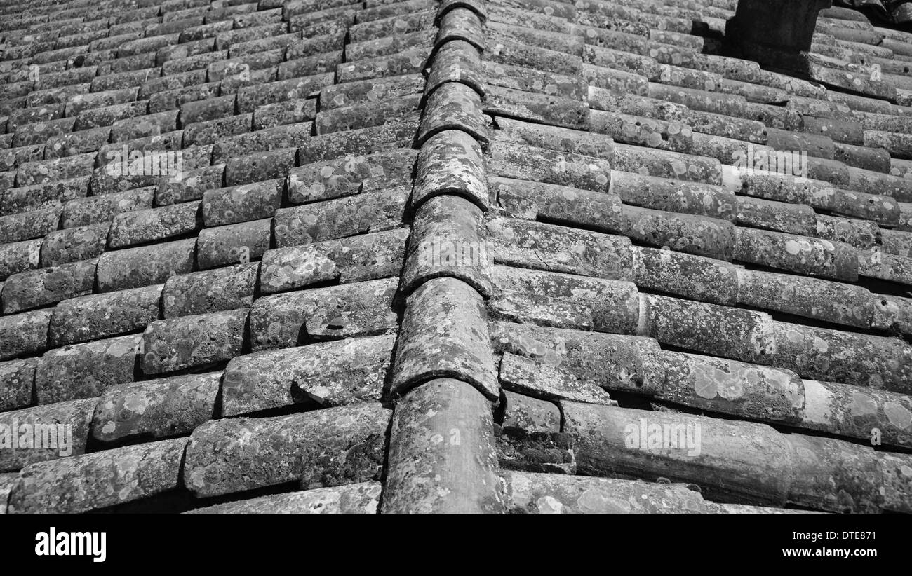Black and white roof detail from battlements of Carcassonne castle - Stock Image
