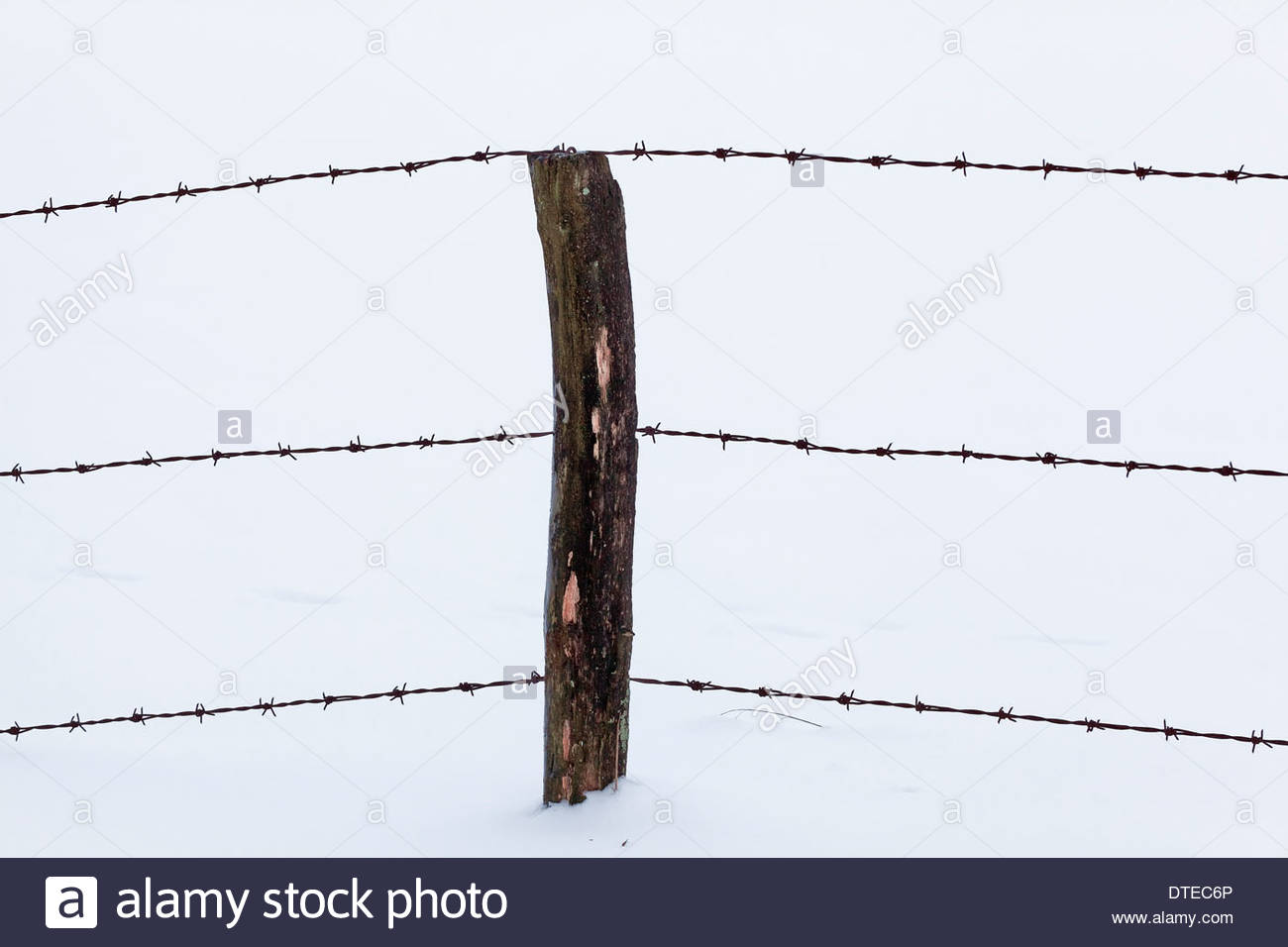 barbed wire fence, wooden fence post in deep snow, Germany - Stock Image