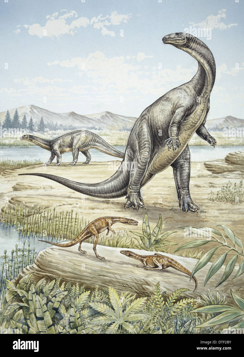 Upper Triassic dinosaurs discovered in Southern Germany - Stock Image