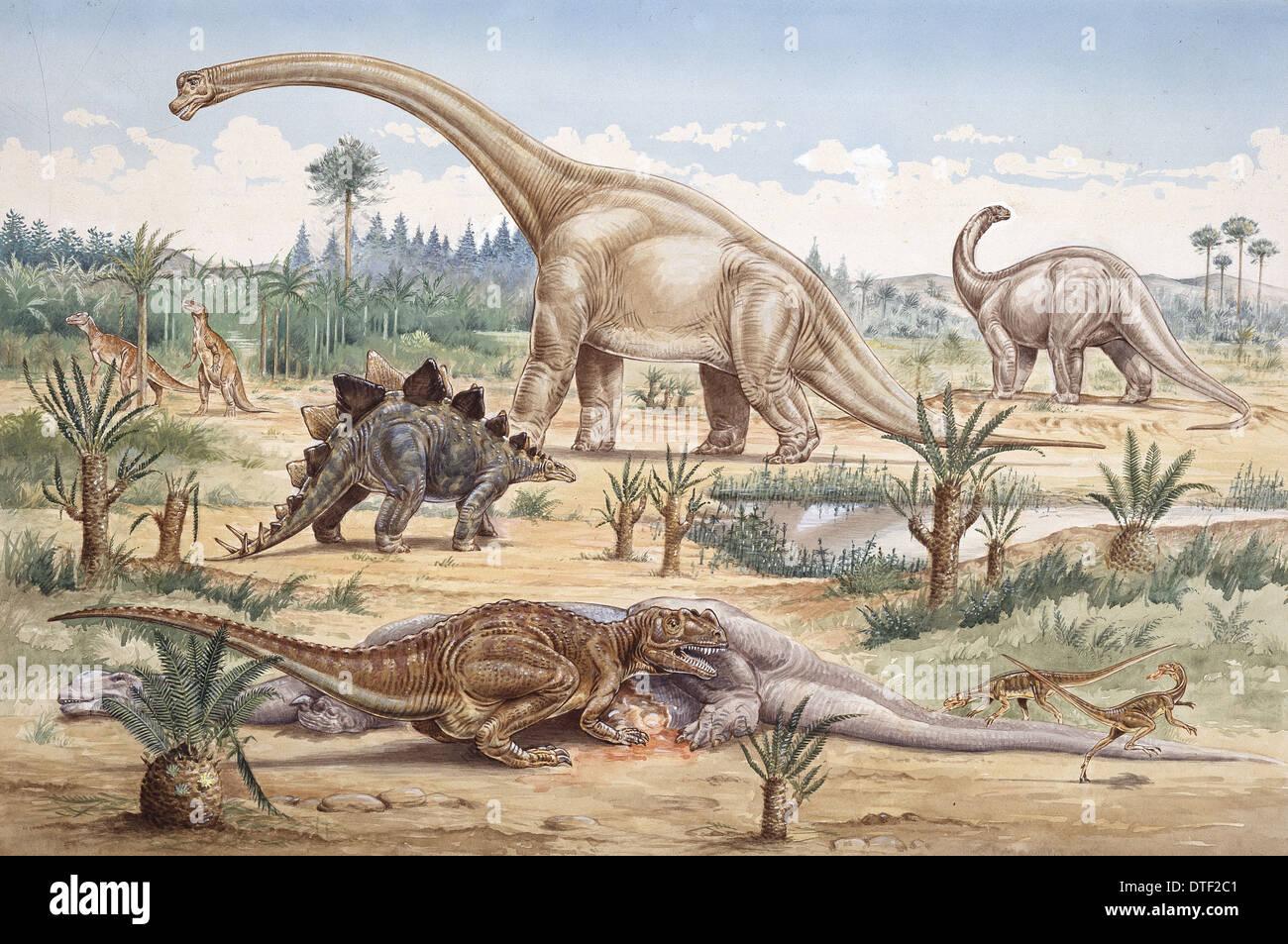 Ceratosaurus, Coelurosaur, Camptosaurus,Stegosaurus, Brachiosaurus & Apatosaurus - Stock Image