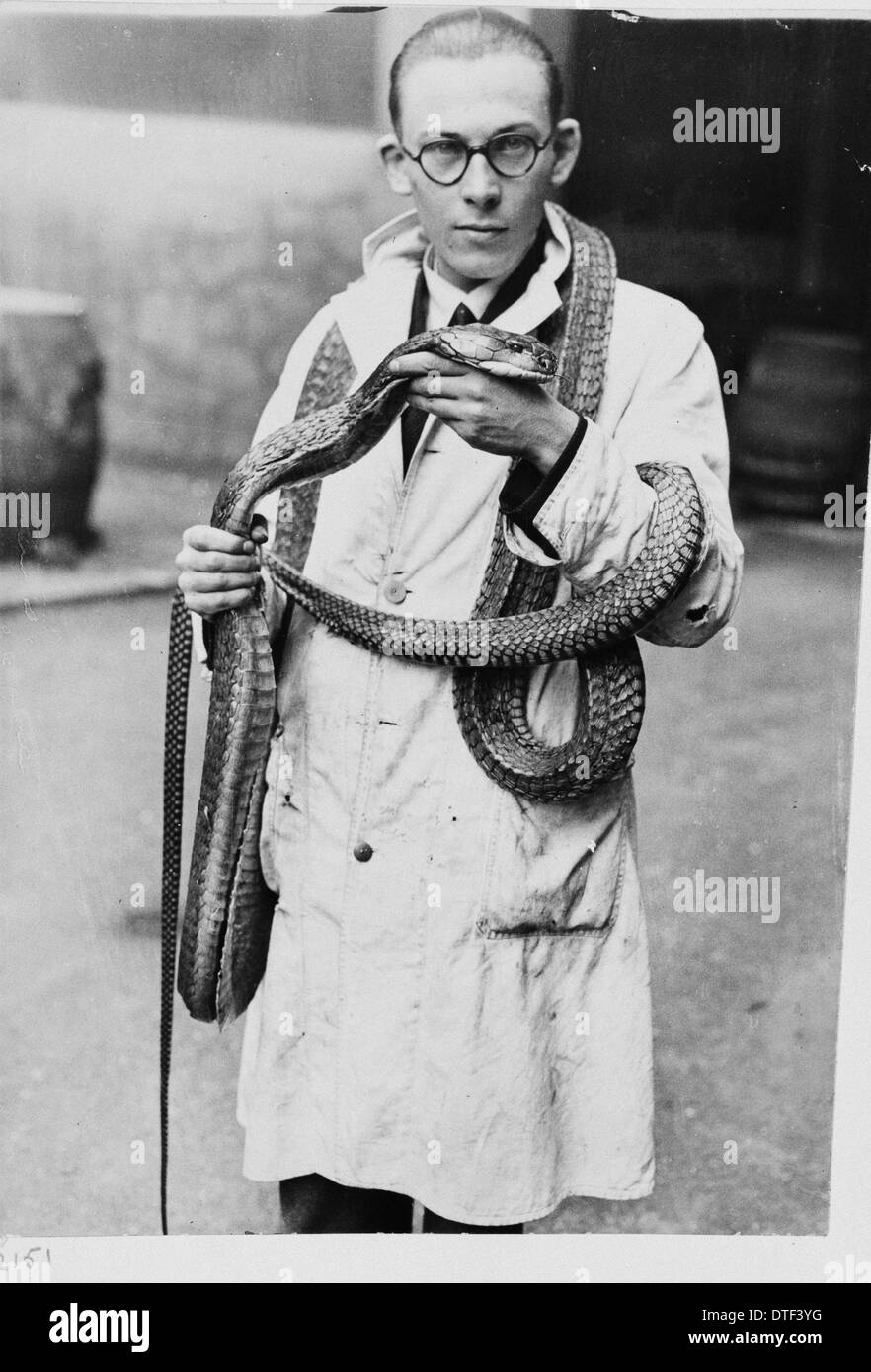Man wearing snake, 1930s Stock Photo
