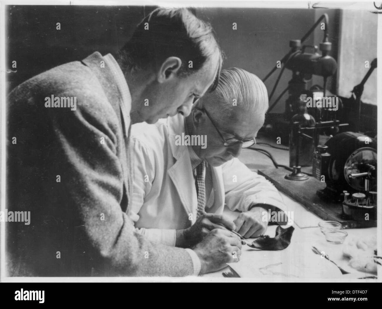 Preliminary flourine test of the Piltdown remains in 1949 - Stock Image