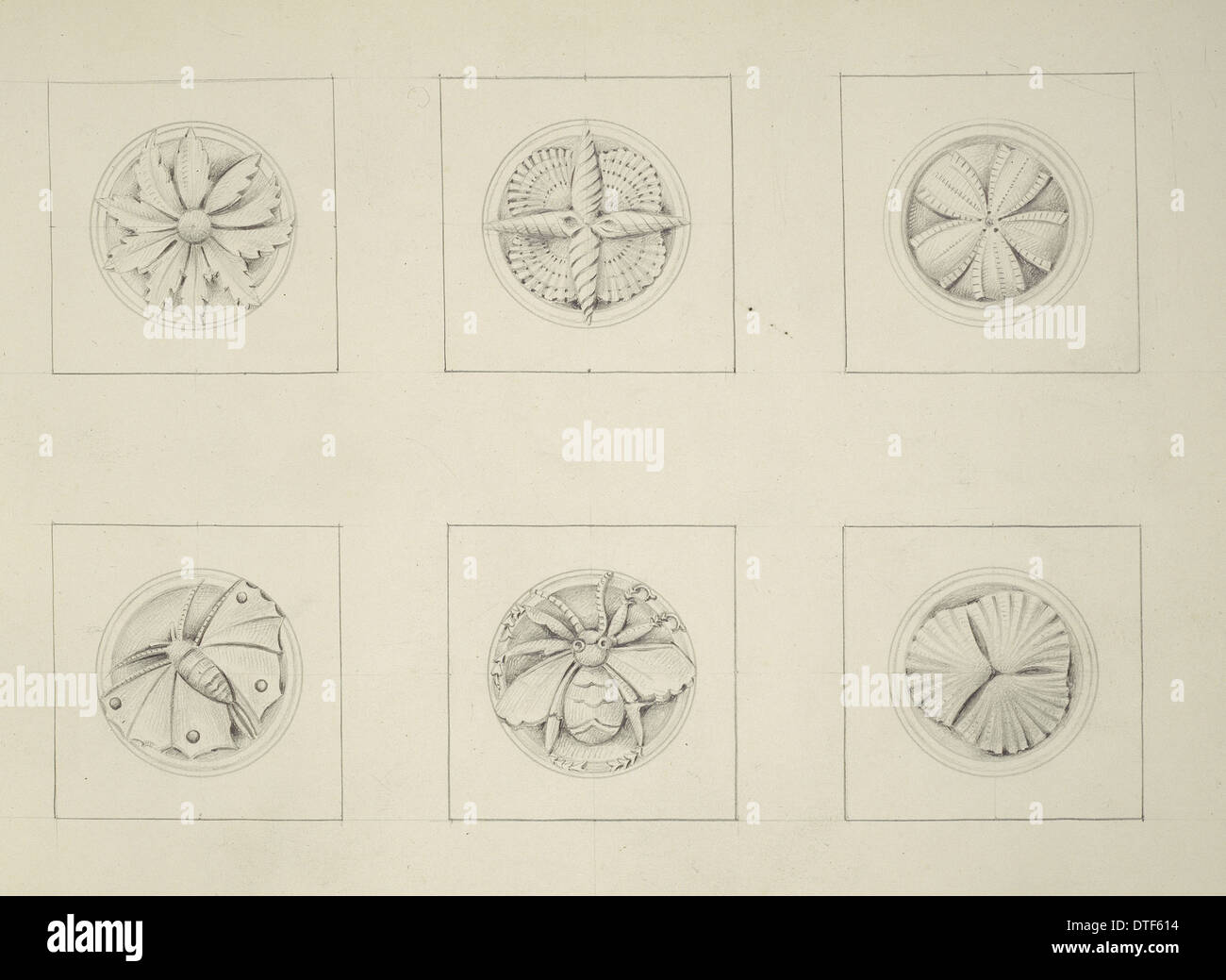 Designs for the Natural History Museum, by Alfred Waterhouse (1830-1905) - Stock Image