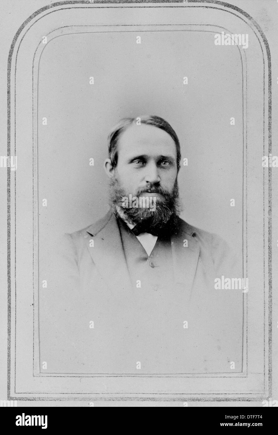 Thomas Richard Archer Briggs (1836-1891) - Stock Image