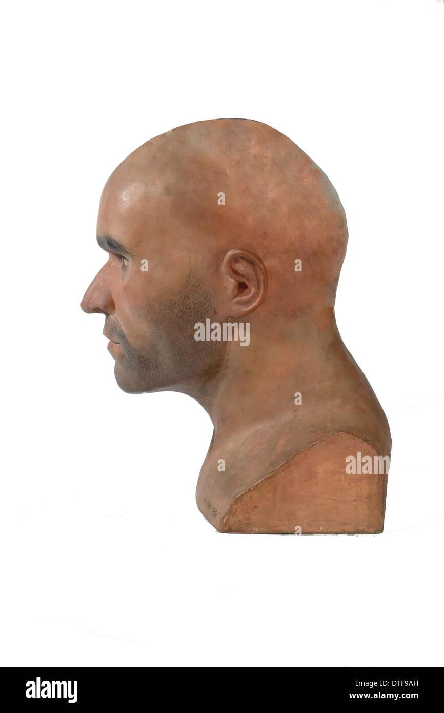 Homo sapiens, Cro-Magnon man Stock Photo: 66719481 - Alamy